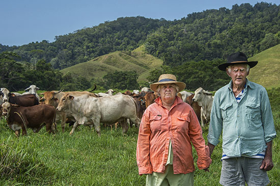 Moran Contemporary Photographic Prize semi-finalist - 'Beef Barons' by Brian Cassey
